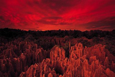 Madagascar_3_3
